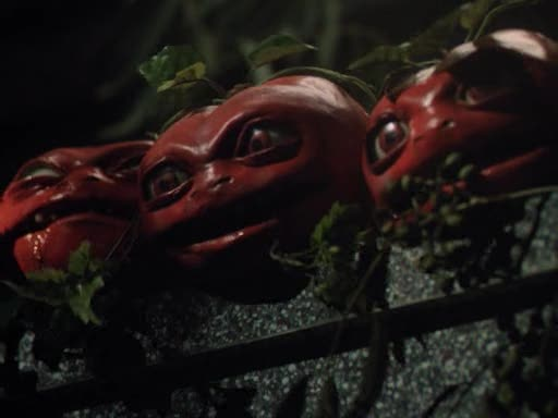 Semana - 1304 - 2 Tomates asesinos
