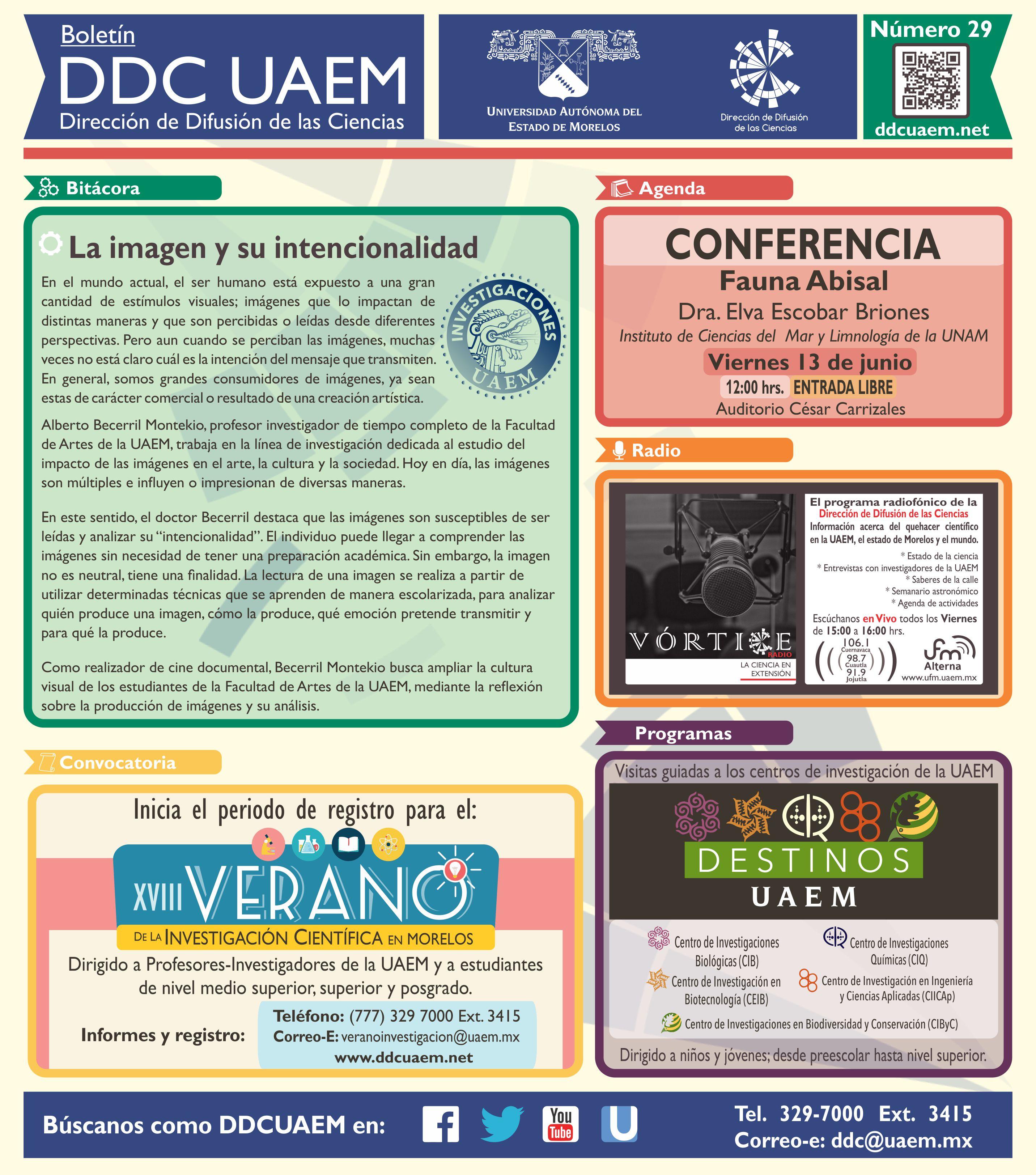 Boletín DDC 29 - RS