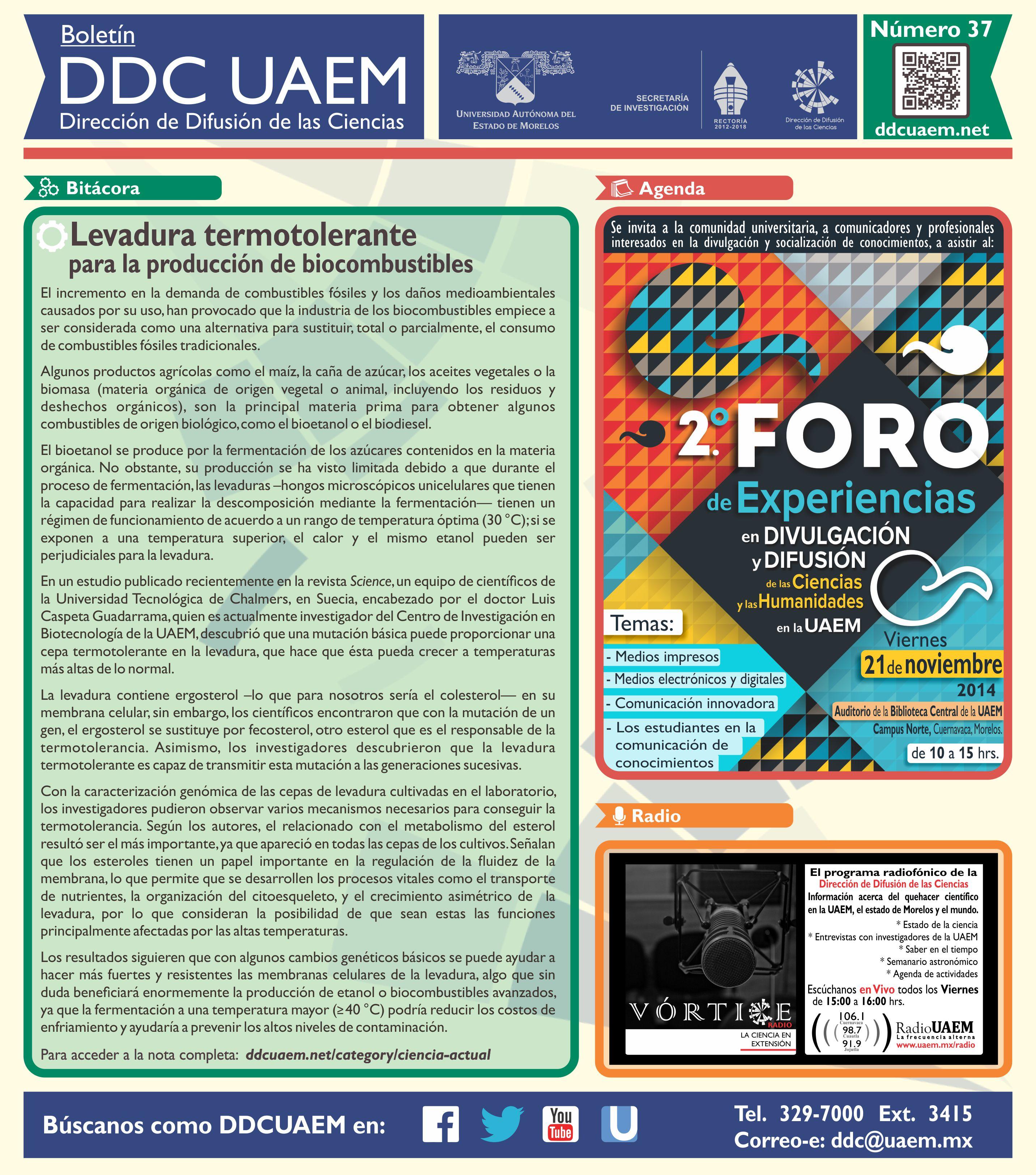 Boletín DDC 37 -RS
