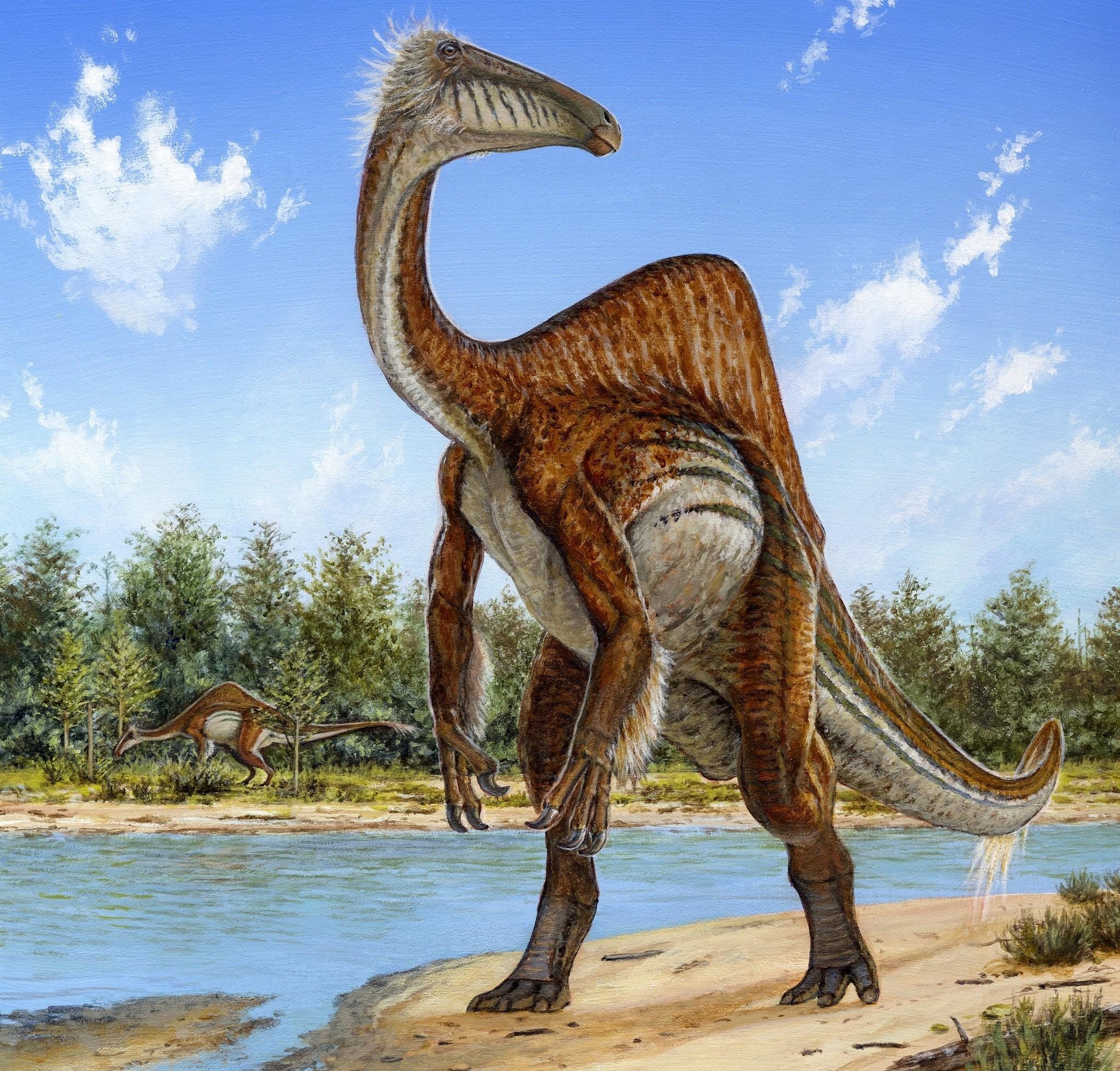 Semana -1447 - 2 Deinocheirus mirificus