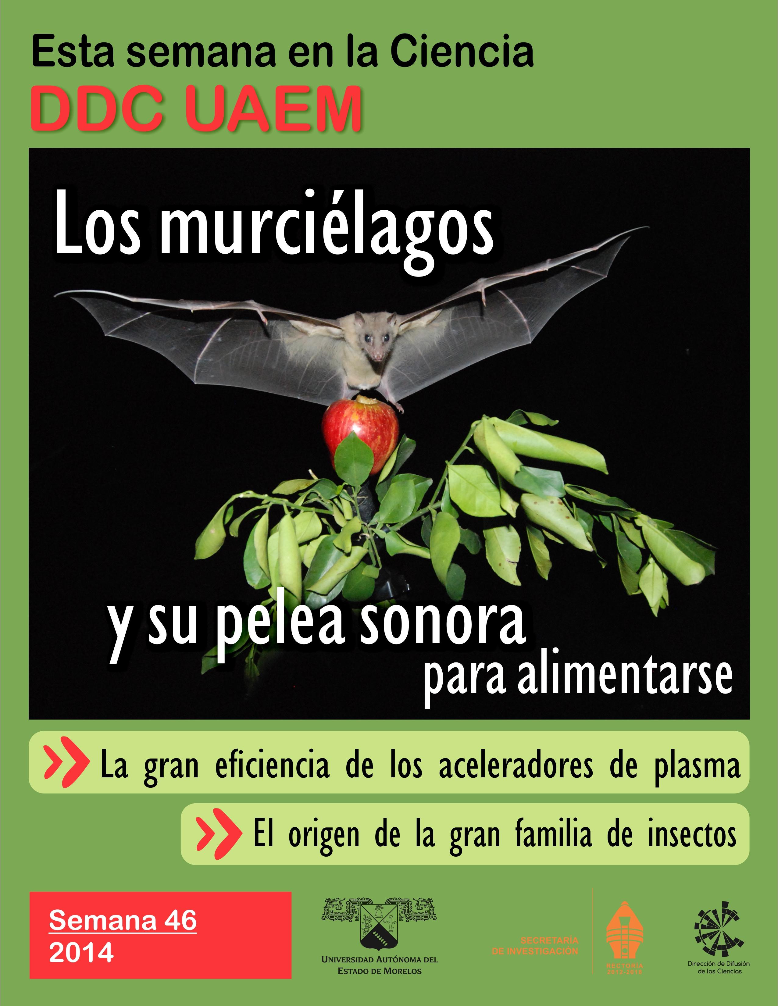 Portada Semana Ciencia 1446