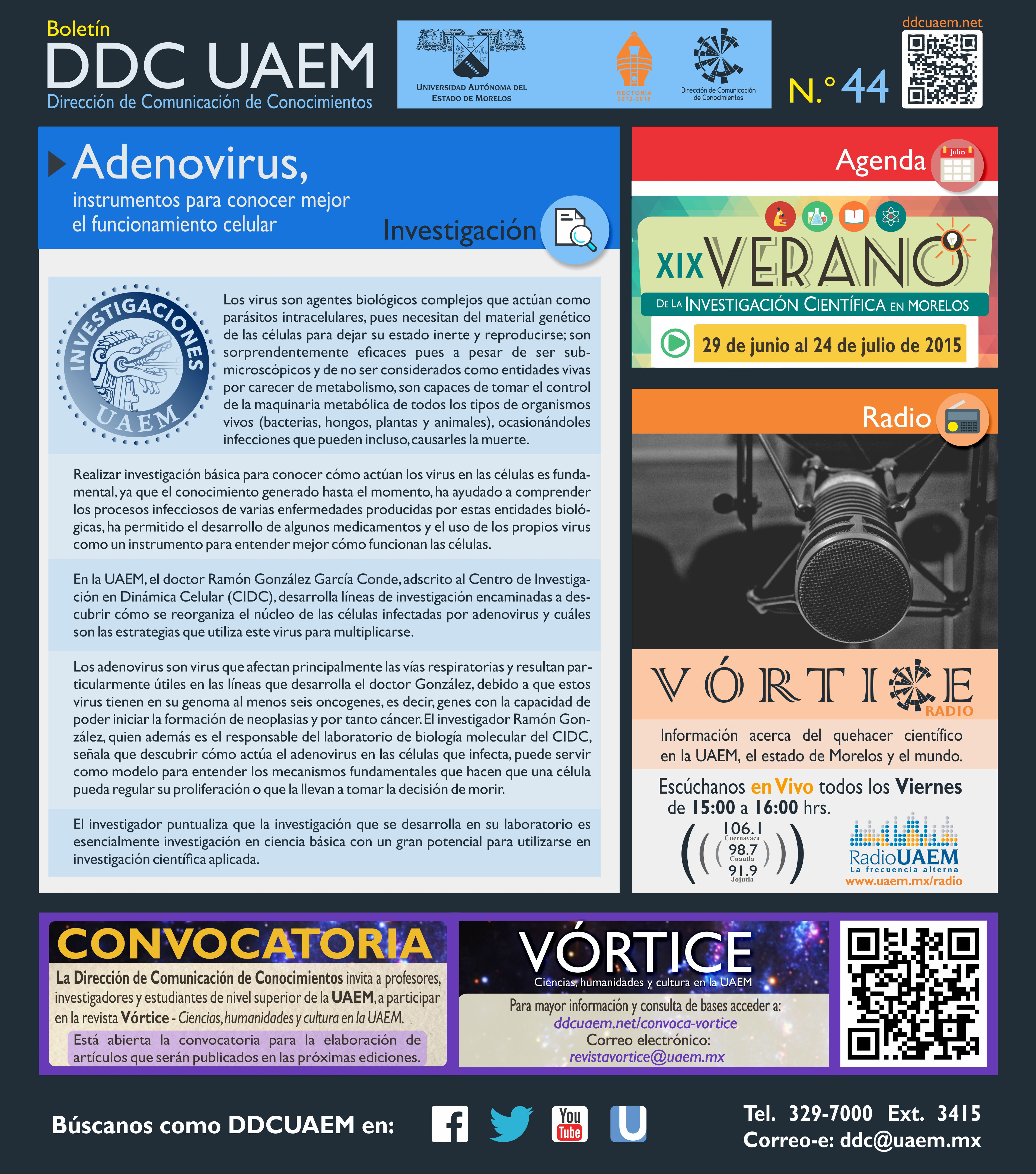 Boletín DDC 44 - RS