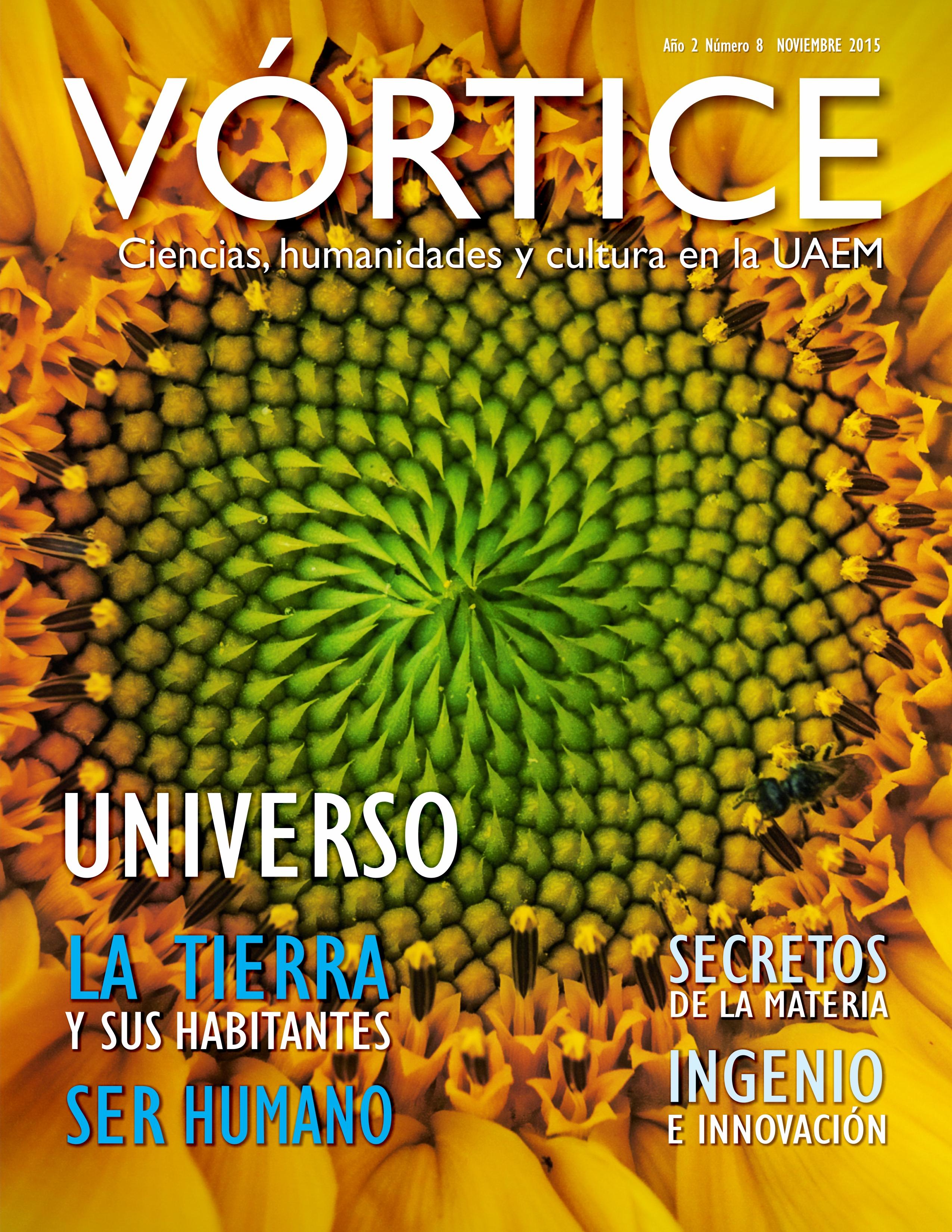 VÓRTICE #8